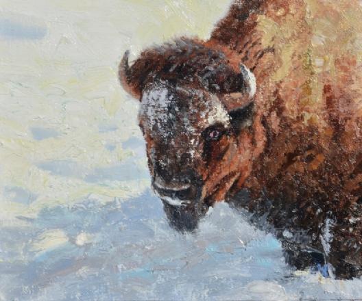 Jerry Antolik bison139