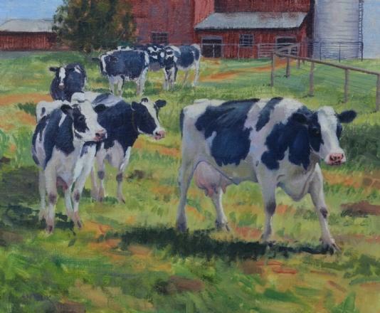 Jerry Antolik cows_133