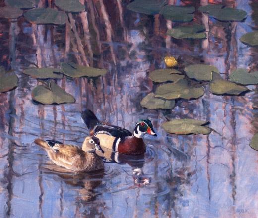 Jerry Antolik  ducks gramas-pond