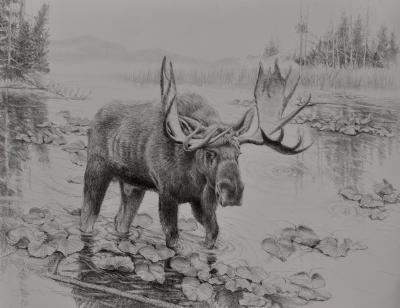 Jerry Antolik  moose
